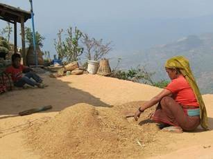 Nepalese_woman_cleaning_rise