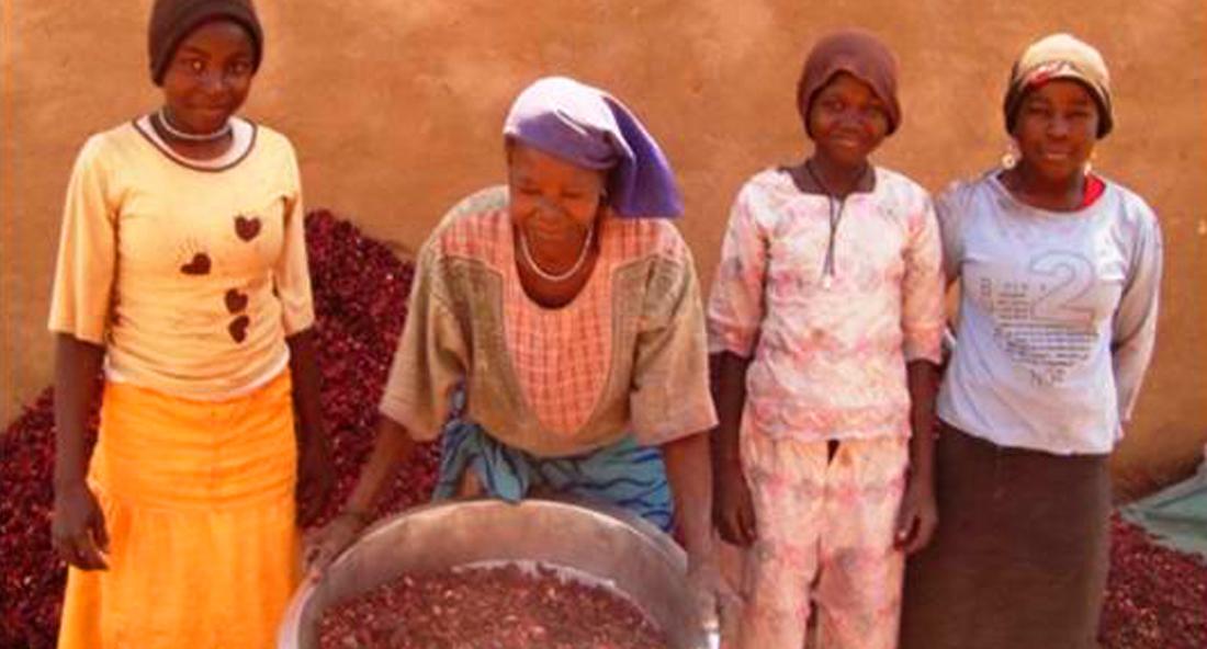 UNDP Sudan (2)