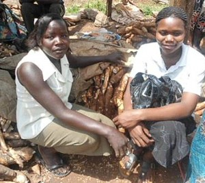 S3938 Uganda project profile-4