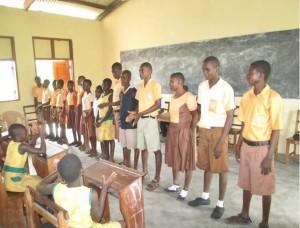 S3940 Ghana project profile-11