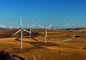 wind-farm-538576